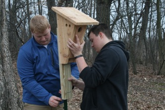 Patrick Donohue, left, and Jonathon Wallace, students at Marquette University High School, Milwaukee, install a wooden nest box for bluebirds on the grounds of the Schoenstatt Retreat Center, Waukesha, in late spring.