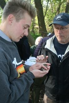 Matt Howenwalter releasing a waterthrush