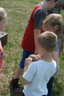 Looking at a box turtle shell