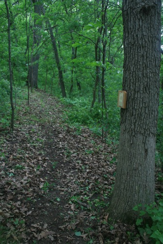 Woodland Trail with tree identification signs.