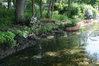 Helping to eliminate shoreline erosion