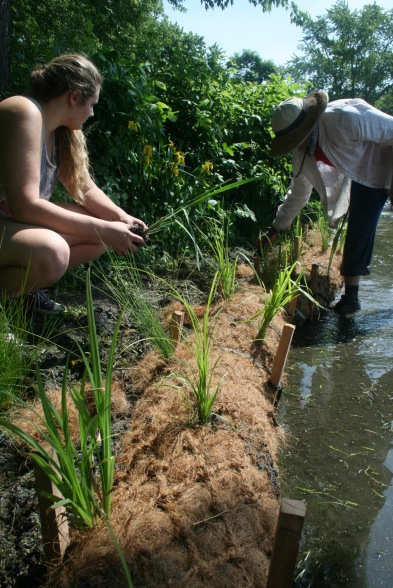 Mackenzie from Arrowhead High School and Jill from Tall Pines Conservancy planting the bio-log