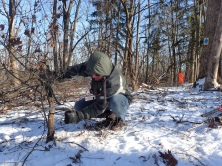 Math teacher Chris Reis cuts buckthorn
