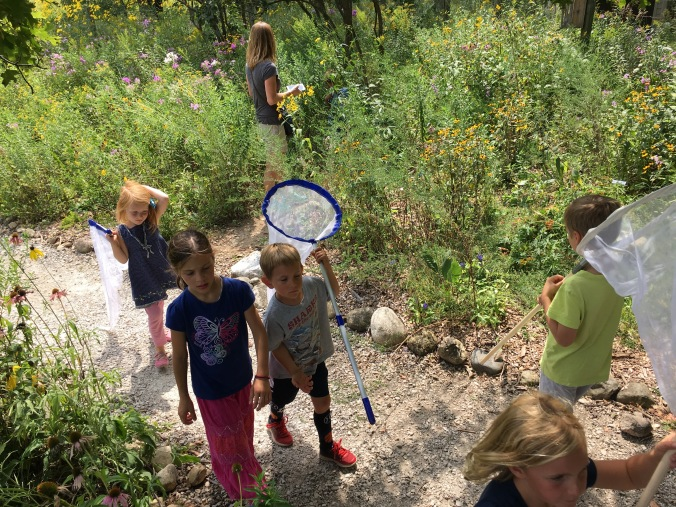 "Laudato Si' Project's ""Bug Hike"""
