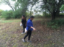 Cristo Rey High School students helping seed the prairie