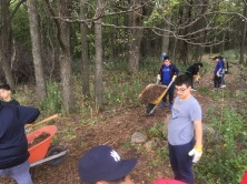 Mulching the nature trail