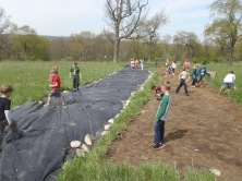 Using a tarp to prepare a site for native plants